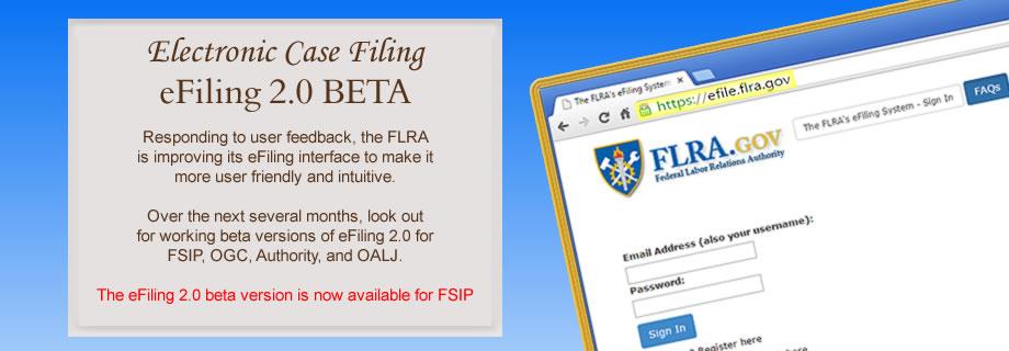 FSIP eFiling 2.0